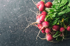 Bunch of fresh radishes. Fresh radishes on old kitchen table. Top view Stock Photography
