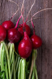 Bunch of fresh radishes Stock Photography