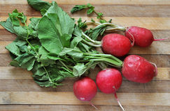 Bunch of fresh radishes on old wooden table. Bunch of red fresh radishes on old wooden table Stock Image