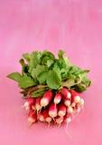 Bunch of fresh radishes on pink background Royalty Free Stock Photo
