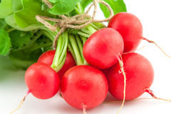 A bunch of fresh radishes on white. Background Stock Photo