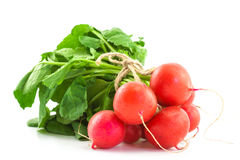A bunch of fresh radishes on white. Background Royalty Free Stock Image