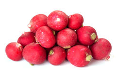 A bunch of fresh radishes Stock Image