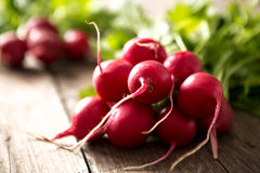 Bunch of fresh radishes on wooden table. Bunch of fresh radishes on rustic wooden table Royalty Free Stock Photography