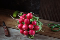 Bunch of fresh radishes on wooden table. Fresh radishes on rustic wooden table, natural light, selective focus Stock Image