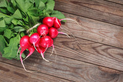 Bunch of fresh radishes on wooden table. Spring vegetables. A bouquet of fresh radish on a wooden table Royalty Free Stock Image