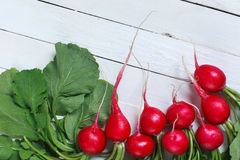 Bunch of fresh radishes on wooden table. Spring vegetables. A bouquet of fresh radish on a wooden table Stock Photography