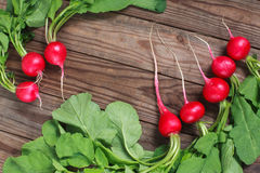 Bunch of fresh radishes on wooden table. Spring vegetables. A bouquet of fresh radish on a wooden table Stock Photos