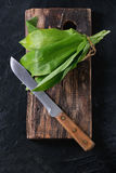 Bunch of fresh ramson. On wooden chopping board with vintage knife over black textured background. Top view Royalty Free Stock Images