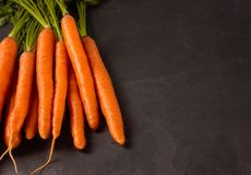 Bunch of raw carrots on dark background. stock photography