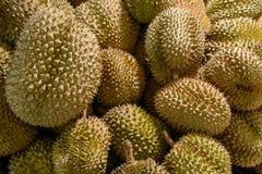 Bunch of fresh raw durians Stock Photo