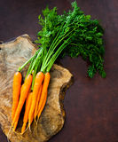 Bunch of fresh raw orange carrots with green leaves. Bush on wooden cutting board Stock Photography