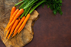 Bunch of fresh raw orange carrots with green leaves Stock Photography
