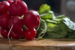 Bunch of fresh raw radish. Radish on s wooden board Royalty Free Stock Photo