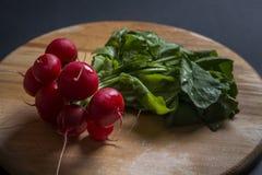 Bunch of fresh raw radish. Radish on a wooden board Royalty Free Stock Image