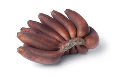 Bunch of fresh red bananas Royalty Free Stock Photos