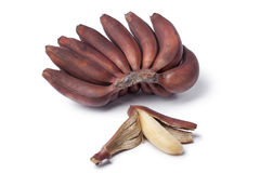 Bunch of fresh red bananas Royalty Free Stock Images