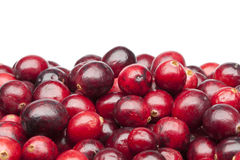 Bunch of fresh red cranberries. On white background Royalty Free Stock Images