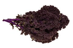 Bunch of fresh red kale over a white background Royalty Free Stock Photography