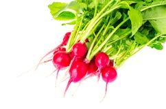 Bunch of fresh red organic radish. Studio Photo Stock Photo