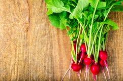 Bunch of fresh red organic radish. Studio Photo Stock Images