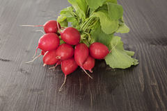 Bunch of fresh red radish on a wooden background Stock Image