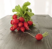 Bunch of fresh red radishes on a wooden background Stock Photography