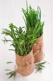 Bunch of fresh rosemary and chives. On wooden table Royalty Free Stock Photos