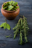 Bunch of fresh rosemary and laurel leaves Royalty Free Stock Image