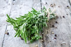 A bunch of fresh rosemary Stock Photo