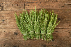 Bunch of fresh rosemary on wooden bench Royalty Free Stock Photos