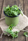 Bunch of fresh rucola Royalty Free Stock Photo