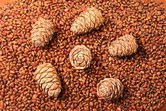 Bunch of fresh Siberian pine, cedar nuts and cones - background Stock Photo