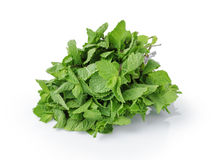 Bunch of fresh spearmint isolated on white Stock Photography