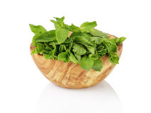 Bunch of fresh spearmint in wood bowl isolated on Royalty Free Stock Photos