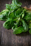 Bunch of fresh spinach Royalty Free Stock Photo