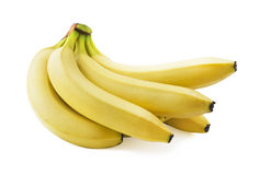 Bunch of fresh spotless yellow bananas. Isolated over white background Royalty Free Stock Images