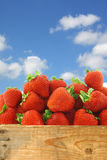 Bunch of fresh strawberries in a wooden crate Royalty Free Stock Photo