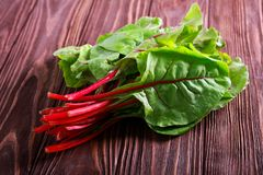 Bunch of fresh swiss chard. Over wooden table royalty free stock images