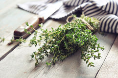 Bunch of fresh thyme Stock Photos