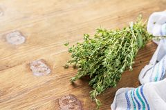 Bunch of fresh thyme Stock Photography