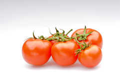 Bunch of fresh tomatoes Royalty Free Stock Images
