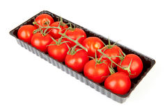 Bunch of fresh tomatoes Stock Image