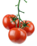 Bunch of fresh tomatoes.. Stock Photos
