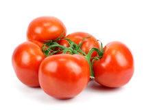 Bunch of fresh tomatoes Royalty Free Stock Photos