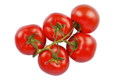 Bunch of fresh tomatoes Royalty Free Stock Photography