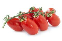 Bunch of fresh tomatoes Stock Image