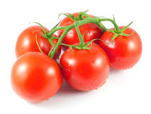 Bunch of fresh tomatoes with water drops Stock Photos