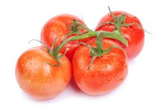Bunch of fresh tomatoes Stock Images