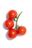 Bunch of fresh tomatoes with water drops. Isolated on white background. Top view. . Isolated on white background. Top view Royalty Free Stock Photo